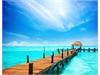 FLC Quảng Bình Beach & Golf Resort | 19