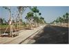 Đất nền dự án Việt Nhân Villa Riverside Quận 9   3