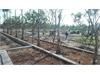 Đất nền dự án Việt Nhân Villa Riverside Quận 9   1