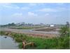 Bán đất nền dự án Hoàng Anh Minh Tuấn tại Quận 9. | 5