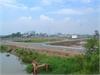 Bán đất nền biệt thự dự án tại Quận 9. | 5