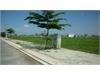Bán đất nền biệt thự dự án tại Quận 9. | 3