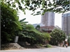 Bán đất nền đẹp tại Phường Thảo Điền Quận 2 | 1