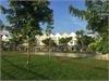 Cho thuê nhà phố Park Riverside 4 phòng ngủ đủ nội thất cao cấp | 7
