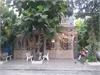 Bán nhà phố 137m2(7x19.5m) Khu dân cư Sông Giồng, phường An Phú, Quận 2. | 1