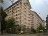 Bán căn hộ Ehome 2 65m2 đã có sổ lầu thấp mát mẻ   2