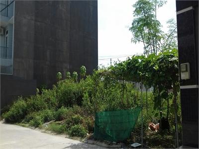 Bán đất nền 57m2  dự án dân cư An Sinh phường Phước Long B.