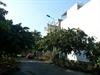 Bán đất Biệt thự sổ hồng tại Hiệp Bình Chánh diện tích 275 m2 | 4