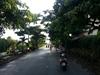 Bán đất Biệt thự sổ hồng tại Hiệp Bình Chánh diện tích 275 m2 | 14
