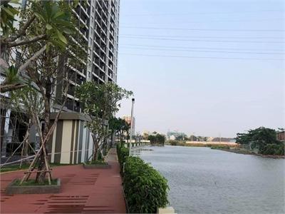 Cho thuê căn hộ Jamila tại đường Song Hành Phường Phú Hữu Quận 9