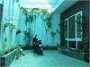 Bán nhà riêng gấp phường Thảo Điền Quận 2   1