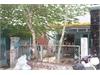 Bán nhà riêng mặt tiền đường 43 phường Bình Trưng Tây | 4