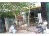 Bán nhà riêng mặt tiền đường 43 phường Bình Trưng Tây | 1