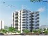 Dự án căn hộ TDH Phước Long | 1