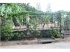Bán đất nền đẹp tại phường Bình An Quận 2 | 1