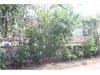 Bán đất nền đẹp tại phường Bình An Quận 2 | 2